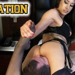 Watch online mixed fight domination Videos